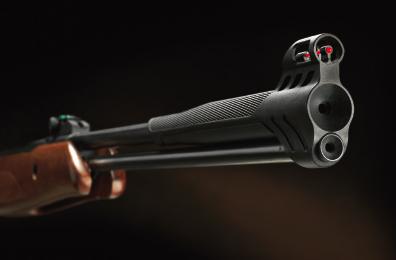Stoeger Airguns - F40